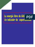 Energía Libre.pdf