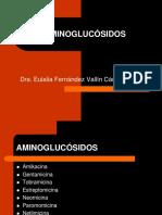 expo aminoglusiodos.pptx