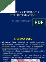SISTEMA OSTEOMUSCULAR.ppt