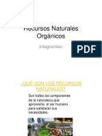 Recursos Naturales Orgánicos TEORIA
