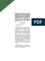 I.U. Julio 2013.pdf