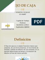 flujodecaja1-120919215325-phpapp02.pptx