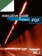 pmi executive guide.pdf