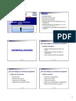 SISTEMAS INTEGRADOS DE GESTION ING. ALDO RAGGIO G..pdf