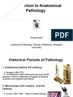 IT 1 - Introduction to Anatomical Pathology