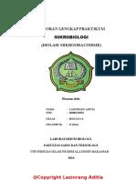 Laporan_Praktikum_Mikrobiologi_Isolasi_M.doc