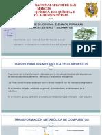 HIDRÓLISIS-DE-GLUCÓSIDOS-EJEMPLOS-FORMULAS-QUÍMICAS.pptx