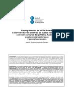 ARIR_TESIS.pdf