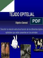 Tejido_Epitelial.pdf
