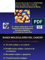 Clase Cancer Parte 1