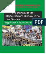 Analisis de La Ley 29783 y Reglamento Sst PDF