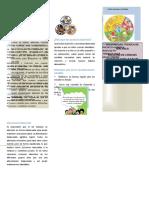 tripticoalimentacionsaludable-131208172010-phpapp02.docx