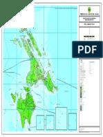 Peta Administrasi Lingga.pdf