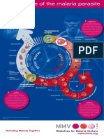 posters_parasitelife.pdf