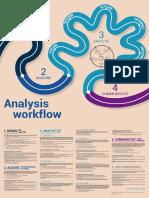 Acaps Analysis Workflow Poster