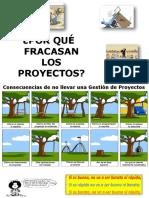 fracasos de proyectos.pdf