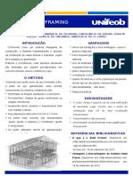 Steel-Framing-CORRETO.pptx