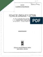Fichas de Escritura y Lenguaje Comprensivas