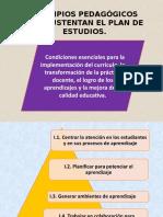 principios-pedagógicos-educación-básica
