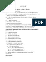 132415128 Implicatii Psihopedagogice Ale Jocului Didactic in Dezvoltarea Limbajului La Prescolari
