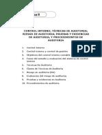 CONTROL INTERNO Programa Auditoria