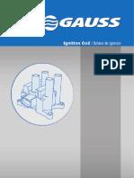 bobina gauss.pdf