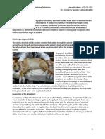 4ECG ProceedingsAA.pdf