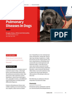 ASK_Common Pulmonary Diseases in Dogs