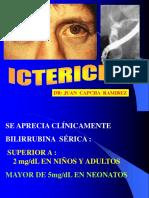 FISIOPAT ICTERICIA