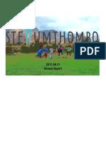 Stellumthombo annual report 2017