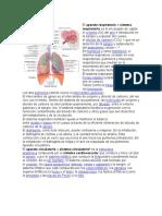 Aparato respiratorio 15Q.docx