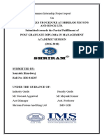 Summer Internship Project report (1).docx