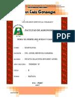 Perfil de Suelo Edafologia[1]