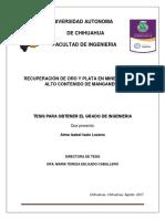 Tesis  RECUPERACIÓN DE ORO Y PLATA EN MINERALES CON ALTO CONTENIDO DE MANGANESO