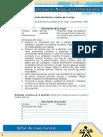 Formato de descripcion y analisis de un cargo (1).doc