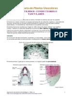 Tema16.pdf