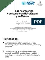 Vegiga_Neurogenica_Consecuencias_Nefrologicas_y_su_Manejo.pdf