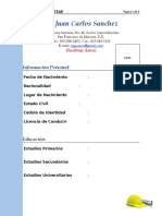 Modelo de Curriculum para Ingenieros Civiles (www.ingenieriacivilrd.com).docx