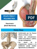 Pelvimetria - DRR.pdf