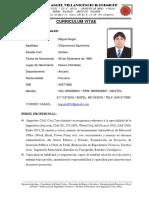 Curriculum Vitae Mvi PDF 01