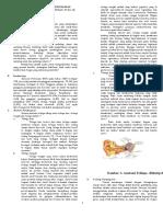 Referat Habilitasi dan Rehabilitasi Gangguan Pendengaran.^_^