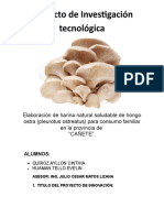 Proyecto de Investigación Tecnológic1