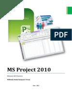 Manual de Ms Project