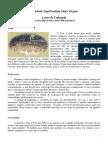 3 - OUTRAS RELIGIÕES AFRO BRASILEIRAS.pdf