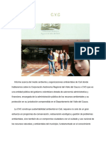Cvc Informe Cvc