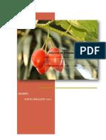 DEFINICIÓN-NÉCTAR-DE-BERENJENA-Y-TUMBO.pdf