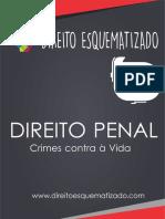 DIREITO ESQUEMATIZADO.pdf