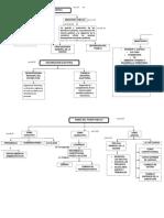 Mapa Conceptual Derecho Institucional