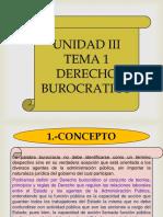 Derecho Burocratico