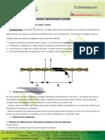 sistema de red can automotriz.pdf